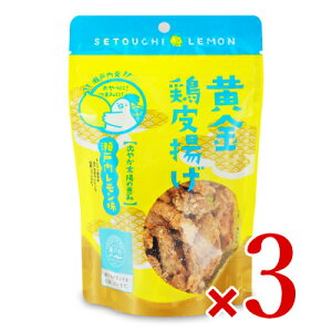 【 SS期間限定 クーポン発行中! 】九州丸一食品 黄金鶏皮揚げ(瀬戸内レモン味)50g × 3袋