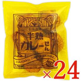 《送料無料》煎餅屋仙七 半熟カレーせん 80g × 24個 セット ケース販売