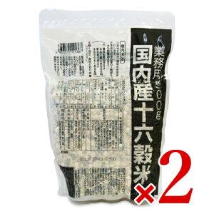 種商 国内産十六穀米 業務用 500g × 2個