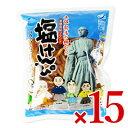 《送料無料》南国製菓 龍馬塩けんぴ 225g × 15個 ケース販売