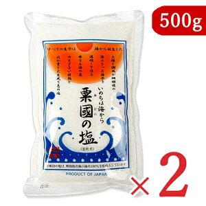 沖縄海塩研究所 粟国の塩 500g × 2袋