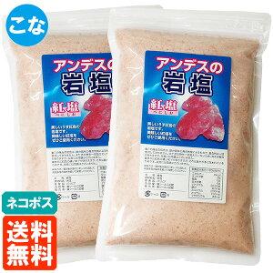 【送料無料・2個セット】アンデスの岩塩 粉(こな) 紅塩 500g×2個 食塩 ネコポス