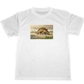 恐竜 ドライ Tシャツ ハーダー イラスト ステゴサウルス ステゴザウルス
