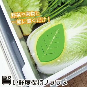 [ メール便 送料無料] 賢い鮮度保持ノススメ 冷蔵庫 野菜 やさい 野菜室 新鮮 長持ち 置くだけ 買い置き 保存 エチレンガス 老化ガス ニオイ におい