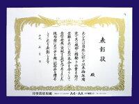 商品番号CA411P(CA4Y0P)