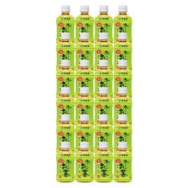 【法人様限定商品】-ed 151742 お〜いお茶緑茶(280ml×24本) メーカー名 伊藤園-【教育・福祉】