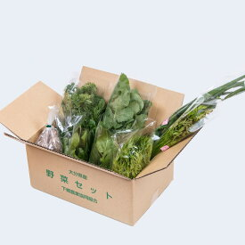 下郷農協の旬の野菜8品目 有機栽培野菜 野菜宅配 【当店お勧め】