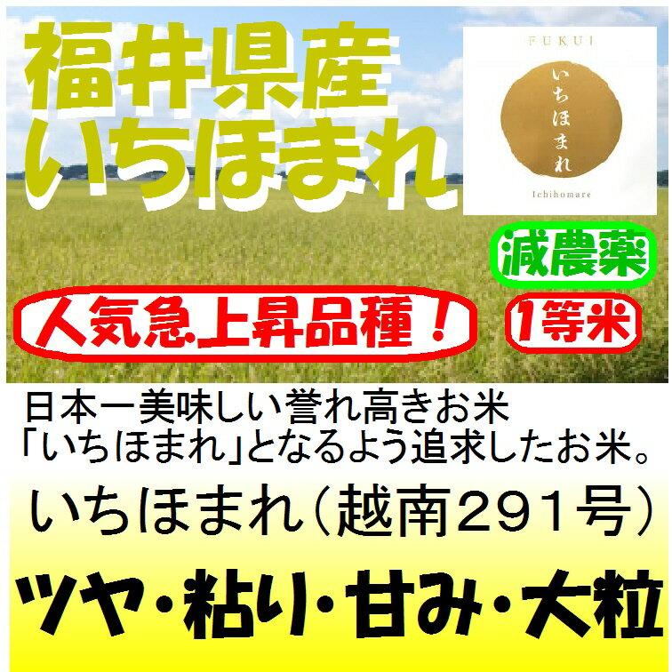 福井県産いちほまれ(減農薬)新米30年産1等米30kg玄米