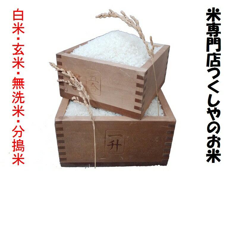 長野県産信州リンゴ米コシヒカリ(無農薬)30年産1等米・特A米5kg