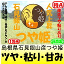 島根県石見銀山つや姫(減農薬)28年産1等米5kg