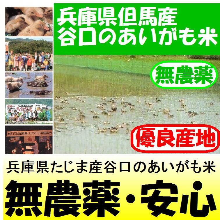 兵庫県但馬産谷口のあいがも米(無農薬)29年産5kg