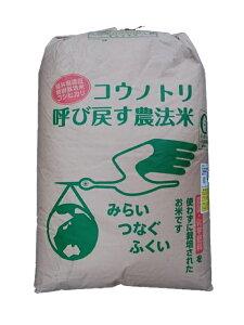 福井県産コウノトリ呼び戻す農法米コシヒカリ(無農薬)令和元年産1等米・特A米25kg玄米
