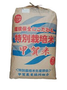 滋賀県甲賀産キヌヒカリ(減農薬)(近江米)令和元年産2等米25kg玄米