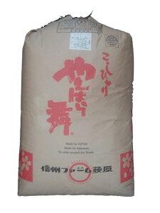 長野県産信州リンゴ米コシヒカリ(無農薬)令和2年産新米1等米・特A米25kg玄米