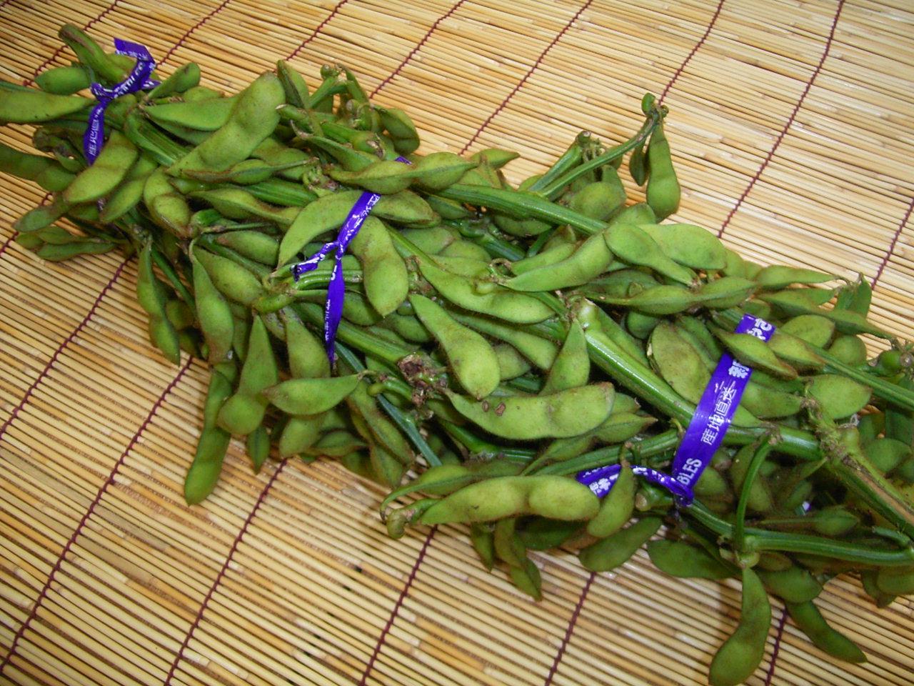 丹波篠山黒大豆枝豆1束(約1kg)丹波黒豆枝豆、丹波枝豆