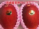 【限定商品】【お買得】宮崎産完熟マンゴー【赤秀】2玉およそ1000g。化粧箱入り。 宮崎マンゴー