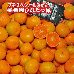 《販売発送中》【産地直送】橘香園ひなたっ娘みかん【特甘】プチスペシャルマルチみかん【赤秀】2S玉およそ80〜90個入り。およそ5kg入り。