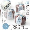 塩水羊羹5個入 沖縄天然塩使用 京都 和菓子 京菓子 こだわり 塩みずようかん お土産 手土産