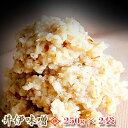 【味噌25002】ただひたすらに麦味噌ひとすじ。昔ながらの伝統の味250g×2袋/500g【送料無料】