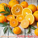 【f 07】吉田みかん 詰め合わせ ファミリーセット 7kg【多少の枝傷・葉傷・黒点等が含まれます。】【送料無料】みかん 柑橘 フルーツ …