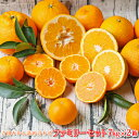 【f 0702】吉田みかん 詰め合わせ ファミリーセット 7kg×2箱【多少の枝傷・葉傷・黒点等が含まれます。】【送料無料】みかん 柑橘 フ…