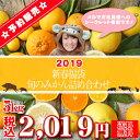 【福 05】【予約販売】新春福袋 -旬のみかん詰め合わせ- 5kg【多少の枝傷・葉傷・黒点等が含まれます。】みかん ミカン 蜜柑 柑橘 福袋