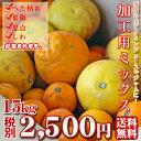 【加工mix 15】加工用ミックス 15kg (サイズ無選別・傷・黒点・ヘタ枯れ・ヤケ・シワ等が含まれます。)ジュース、ゼリー用【愛媛県産…