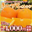 【ネ10】(家庭用・サイズ込)ネーブル10kg                     【全国どこでも送料無料】