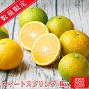 【スイート 04】【☆数量限定☆】スイートスプリング 4kg【多少の枝傷・葉傷・黒点等が含まれます。】みかん ミカン 蜜柑 柑橘 スイー…