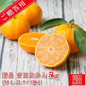 【S吉 05】【精品】吉田 みかん 5kg(贈答用・精品・M、L、2Lサイズ込みで約38玉前後】【送料無料】みかん ミカン 蜜柑 贈答 お歳暮 フルーツ 果物 柑橘 贈答用 贈物