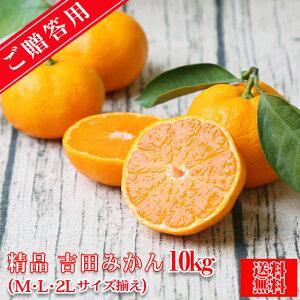 【S吉 10】【精品】吉田 みかん 10kg(贈答用・精品・M、L、2Lサイズ込みで約76玉前後】【送料無料】みかん ミカン 蜜柑 贈答 お歳暮 フルーツ 果物 柑橘 贈答用 贈物
