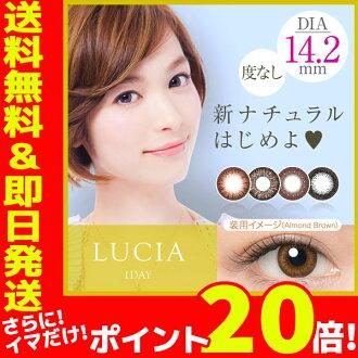LUCIA 日抛彩色隐形眼镜 10片装  14.2mm/ 无度数