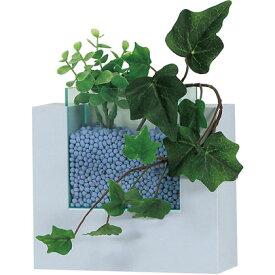 ベルク コポット キューブ ブルー GR0403 植物 緑 インテリア