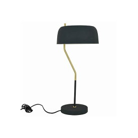 Reflection Code(リフレクションコード) テーブルスタンド照明 FC13/フェズ アイアンブルー 照明プレート 1個