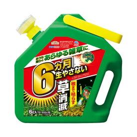 アース製薬 草消滅 6TEL 1個
