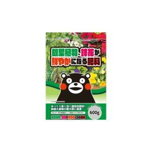 有限会社籐吉郎企画 観葉植物の肥料 1個