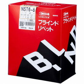 エビ ブラインドリベットステンレス/ステンレス6−8(1000本入) 170 x 122 x 192 mm NST6-8 1000本