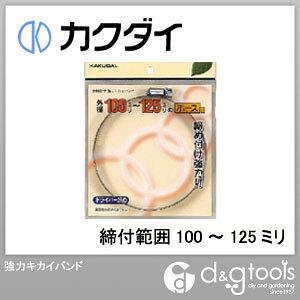 カクダイ(KAKUDAI) 強力キカイバンド(締付範囲100〜125ミリ)ホースバンド 9563-P
