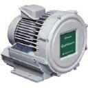 昭和電機 電動送風機 渦流式高圧シリーズ ガストブロアシリーズ(1.5kW) U2V150 1台