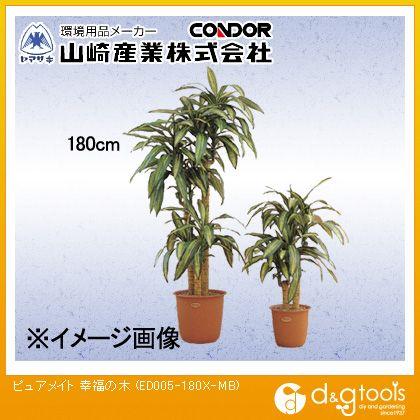 山崎産業(コンドル) ピュアメイト 幸福の木 (ED005-180X-MB)