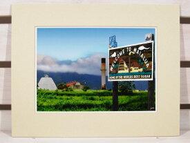 【激安・ポッキリセール】【HAWAII】フォトグラフ アート・サイズL・Sugar Mill at Waialua ・カラー 【ハワイ雑貨】【インテリア】【返品交換不可】