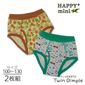 HP+mini 男児2枚組ブリーフ(ラクガキ恐竜/ドット迷彩柄)100/110/120/130(7088/7089) メール便OK ジュニア パンツ