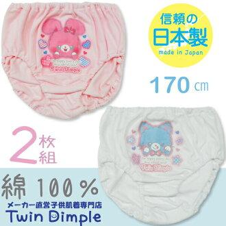 小前面的印刷動物花紋(貓&兔子)短褲2張組170日本製造褲子女人的孩子10P03Dec16