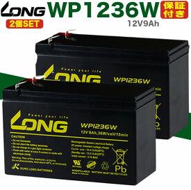 2個SET Smart-UPS・無停電電源装置・蓄電器用バッテリー完全密封型鉛蓄電池(12V9Ah)WP1236WAPC/ユタカ電機/GSユアサ RE7-12/パナソニック/日立/RS900/BR900-JP/Smart-UPS1400RM/Smart-UPS1400RM/Smart-UPS500