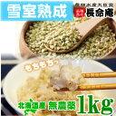 国産 新そばの実1kg(北海道産)【メール便送料無料】雪室熟成で旨味UP 蕎麦の実 そば米 ソバノミ【ラッキーシー…