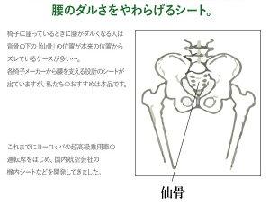 【送料無料】仙骨サポートシェル3Dチェアロータイプ532P16Jul16【RCP】