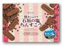 【宮城菓子店】焼きショコラ 石垣の塩ちんすこう大箱 48個(2×24袋)入り