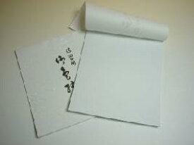 色紙 練習用 <20枚綴り> 大色紙 書道用品 習字 書道教室 道具 書道用紙