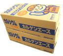 カルゲンエース2箱(200mlx24入)×2北海道・九州・沖縄500円割増/賞味期限2019年4月2日