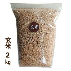 【新米】【玄米】新潟特別栽培米コシヒカリ曽我さんのこしひかり令和2年産玄米2kg便利なチャック付き袋